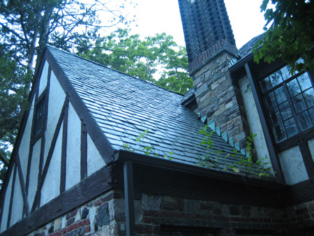 Slate Roof, Foliage Growing In The Gutter