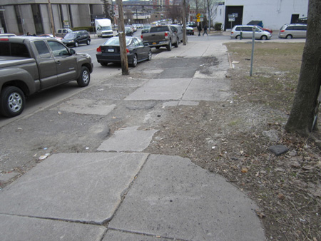 Carefully Neglected Sidewalk On Morton Avenue Across From The Albany Police Compound