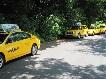 NYC Taxis Parked Near The Pool House