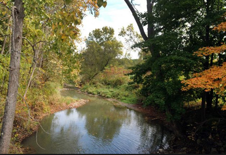 Coeyman's Creek At The Site Of Jerry Jennings' Proposed Dump In Coeymans: Defeated