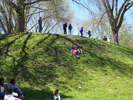 Kids Rolling Down A Hill In Washington Park