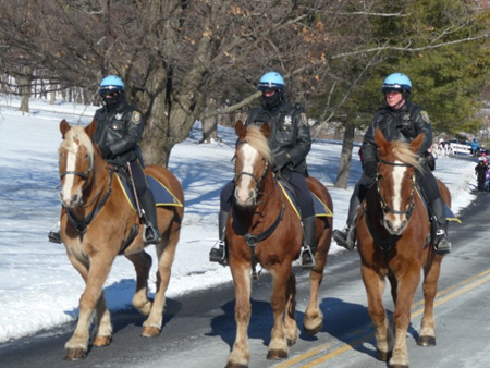 Cold Cops On Horses